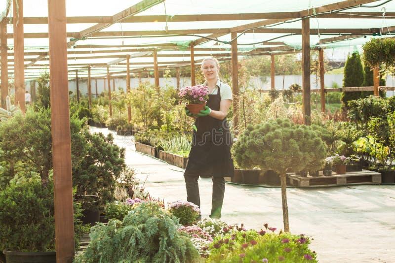 Jardineiro da mulher com potenciômetros foto de stock royalty free