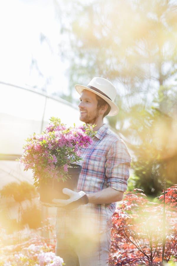 Jardineiro de sorriso que olha ausente ao guardar o potenciômetro de flor fora da estufa fotos de stock