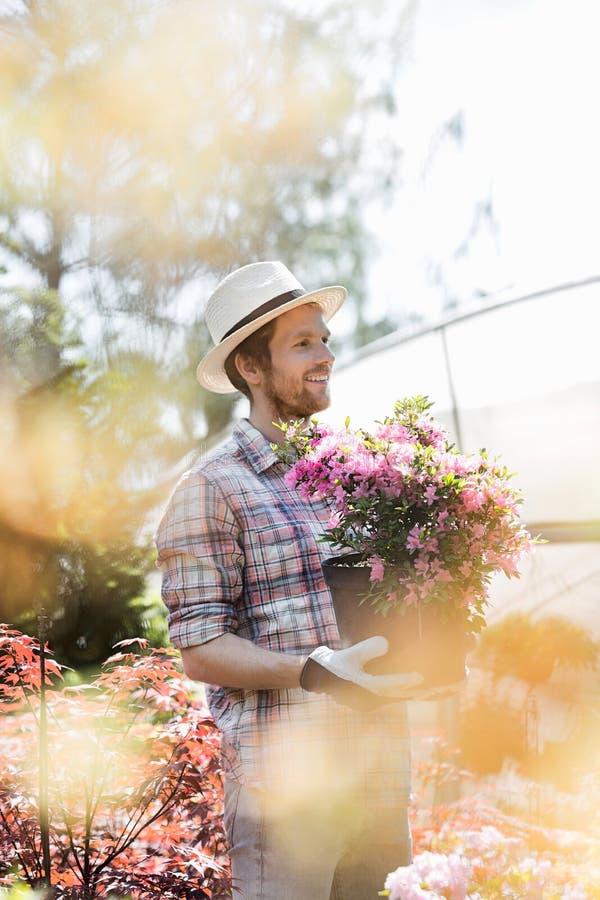 Jardineiro de sorriso que olha ausente ao guardar o potenciômetro de flor fora da estufa fotografia de stock royalty free