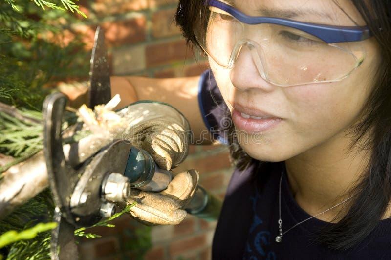 Jardineiro fêmea foto de stock royalty free