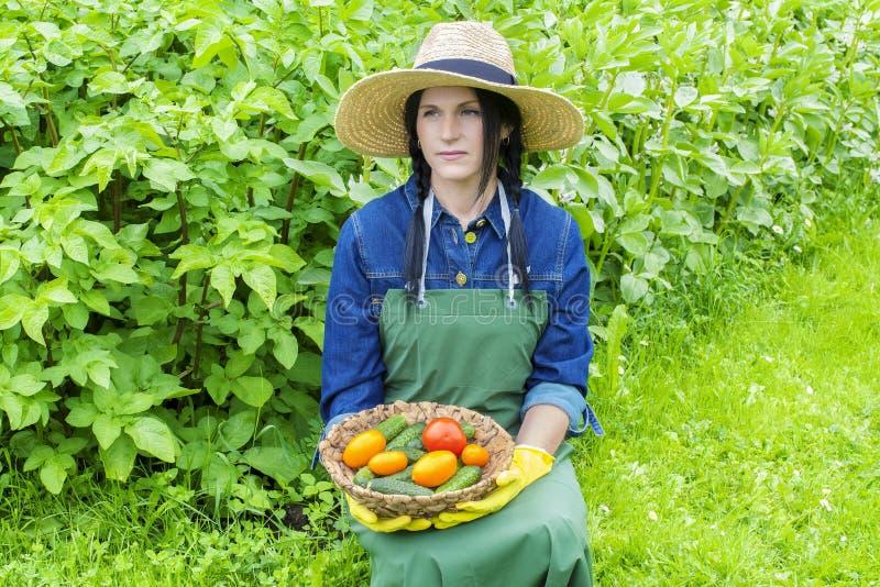 Jardineiro fêmea com vegetais imagem de stock