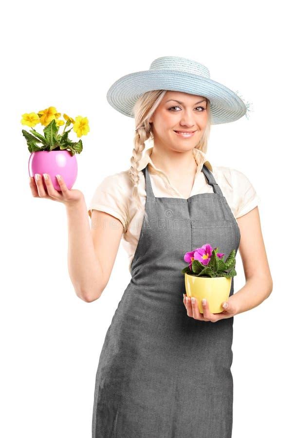 Jardineiro fêmea de sorriso que prende duas plantas potted fotografia de stock
