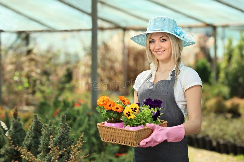 Jardineiro fêmea em um jardim foto de stock royalty free