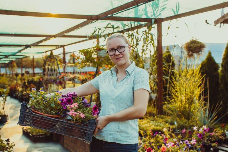 Jardineiro feliz com planta fotografia de stock royalty free