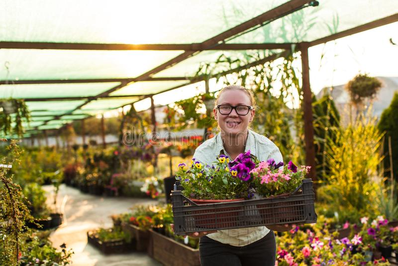 Jardineiro feliz com planta fotos de stock royalty free