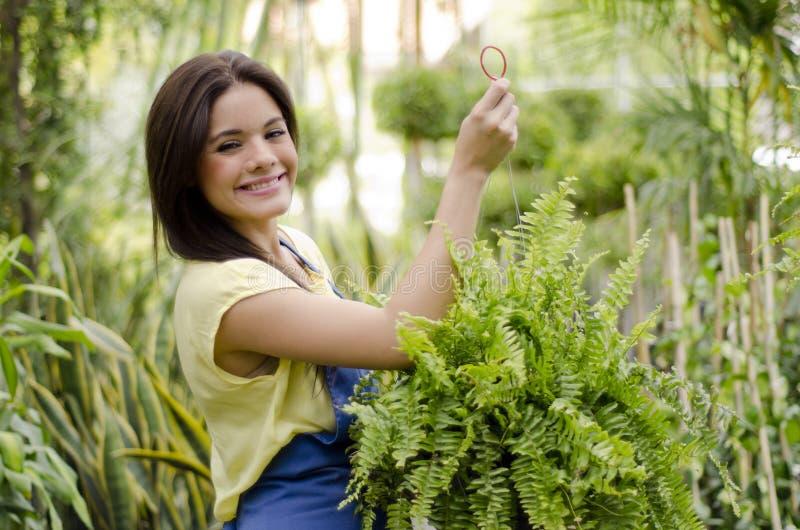 Jardineiro feliz que pendura uma planta fotografia de stock