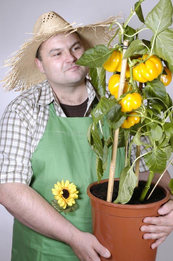 Jardineiro: orgulhoso imagens de stock royalty free