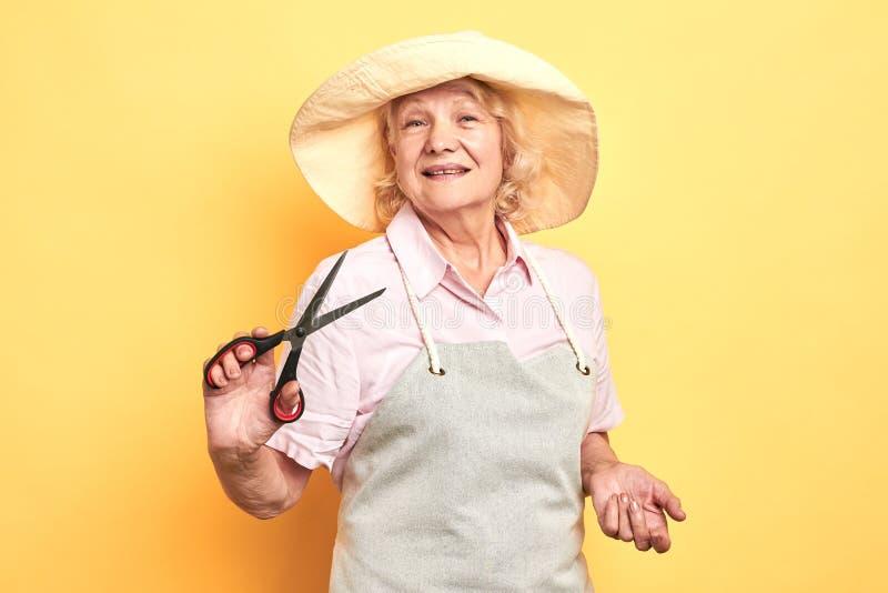 Jardineiro ou florista de sorriso idoso profissional no avental que guarda tesouras imagem de stock