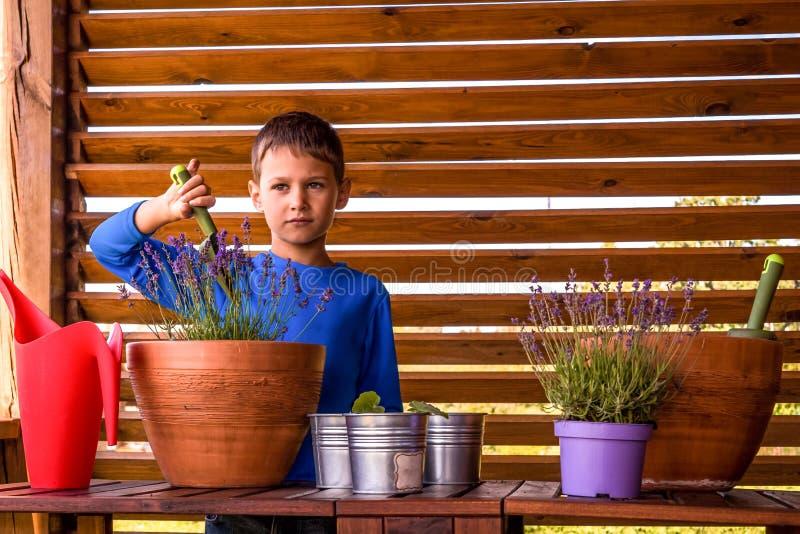 Jardineiro pequeno feliz com flores e plantas no terraço imagens de stock