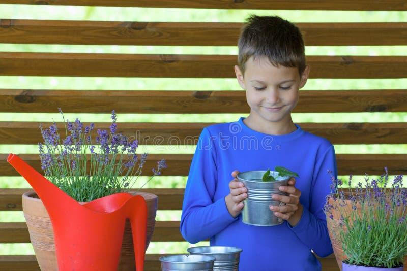 Jardineiro pequeno feliz com flores e plantas no terraço fotografia de stock royalty free