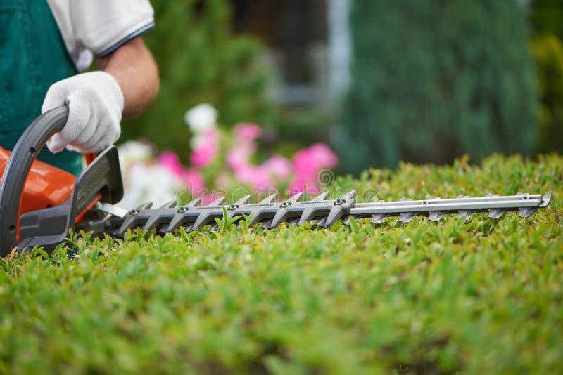Jardineiro profissional, trabalhando com equipmentl do jardim foto de stock
