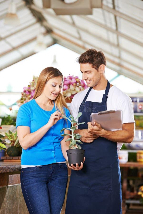 Jardineiro que dá o conselho ao cliente no berçário imagem de stock