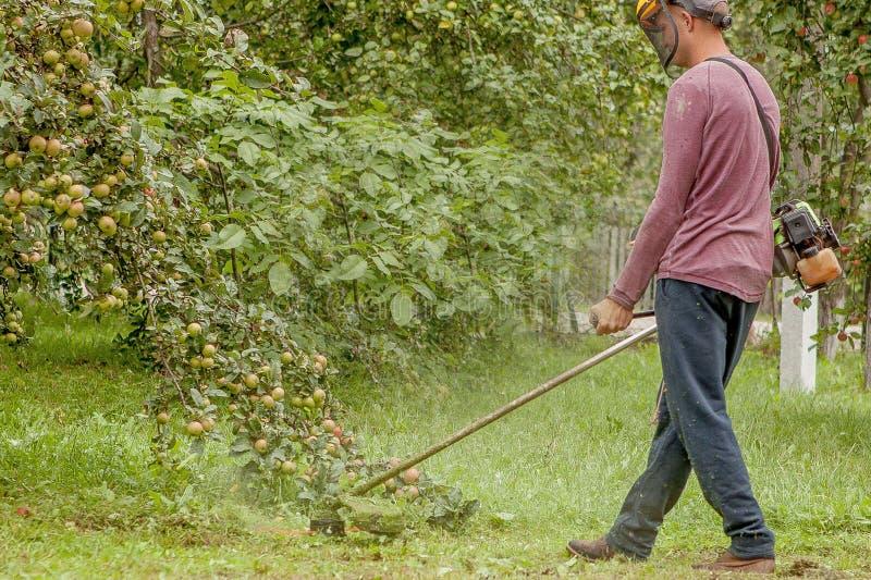 Jardineiro que usa a grama verde de corte de m?quina no jardim Equipamento de jardim Homem novo que sega a grama com um ajustador fotografia de stock royalty free