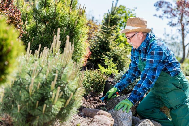 Jardineiro superior que escava em um jardim foto de stock royalty free