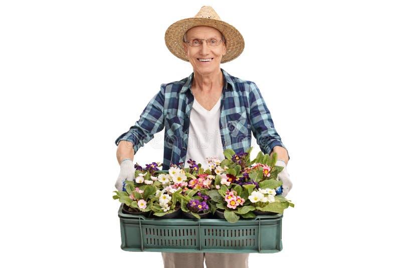 Jardineiro superior que guarda um grupo de flores imagens de stock royalty free