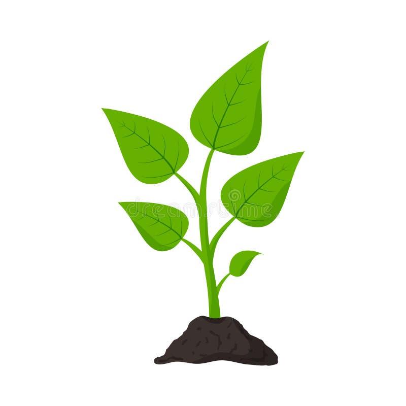 Jardiner?a planting Alm?cigo en tierra Icono de la planta Vector libre illustration