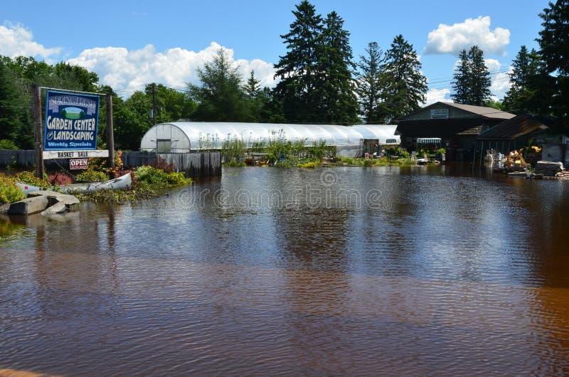 Jardinerie fraîche de source en inondation photographie stock