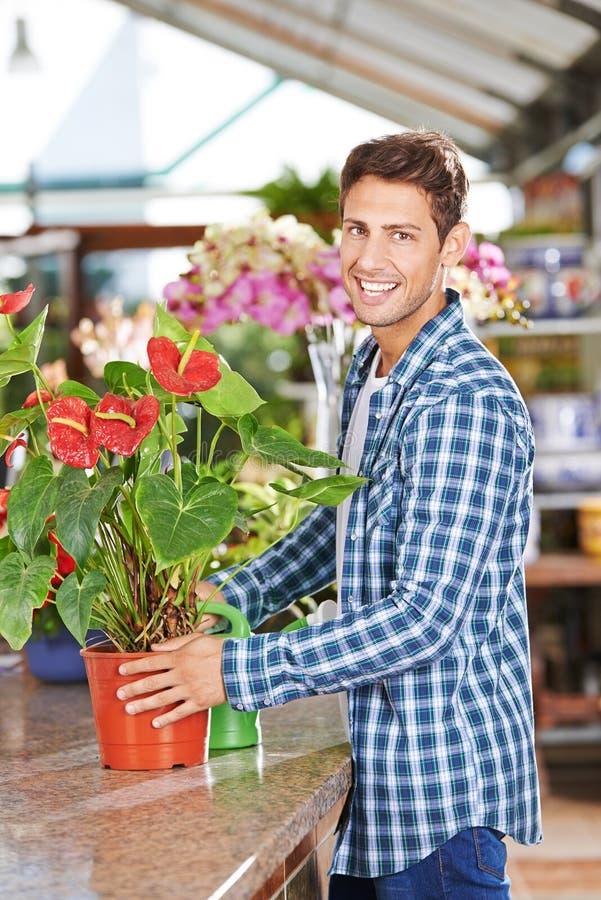 Jardinero con la flor de flamenco en tienda del cuarto de niños imagen de archivo