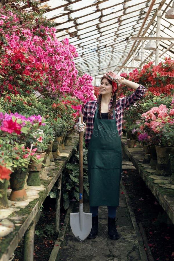 Jardinero de la muchacha en delantal y guantes con una pala grande, llevando a cabo la mano en su cabeza, mirando lejos en invern foto de archivo libre de regalías