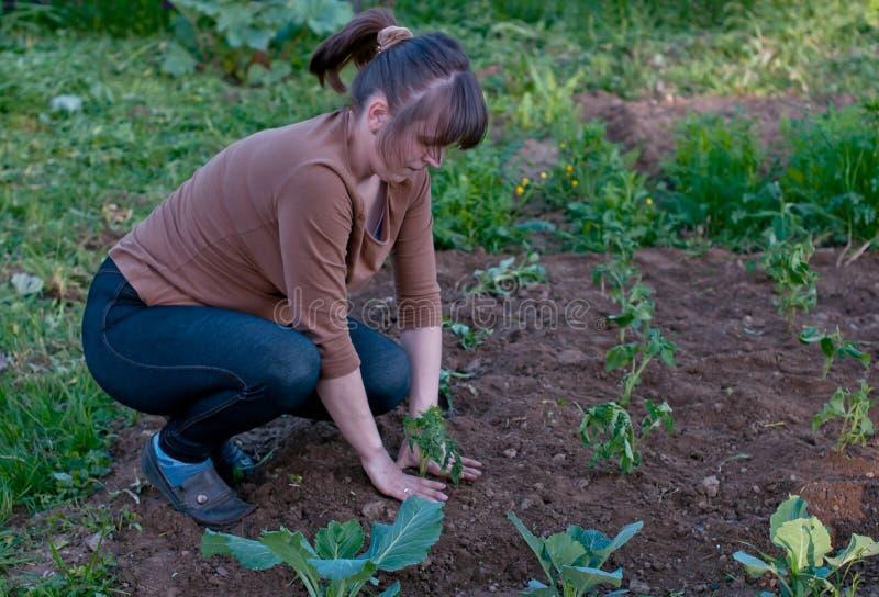 Jardinero de sexo femenino imagenes de archivo