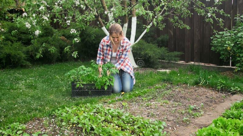 Jardinero de sexo femenino joven que se sienta en el jardín y que planta almácigos fotos de archivo libres de regalías