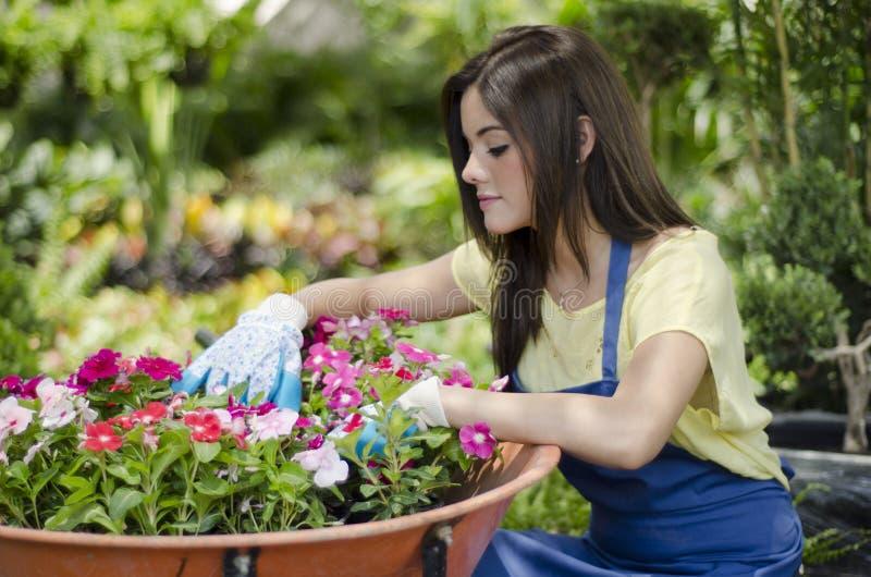 Jardinero de sexo femenino lindo en el trabajo foto de archivo libre de regalías