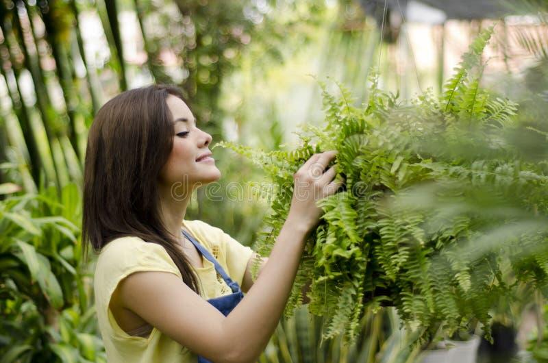 Jardinero de sexo femenino que ama su trabajo fotografía de archivo libre de regalías
