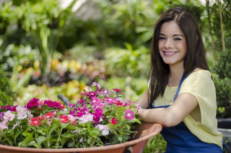 Jardinero de sexo femenino que mueve algunas flores imagenes de archivo