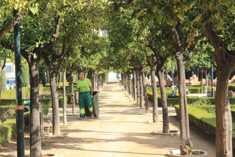 Jardinero en un parque público en Málaga fotos de archivo libres de regalías