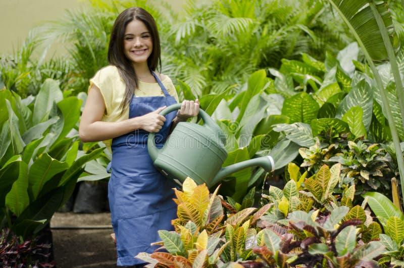 Jardinero feliz que riega las plantas fotografía de archivo
