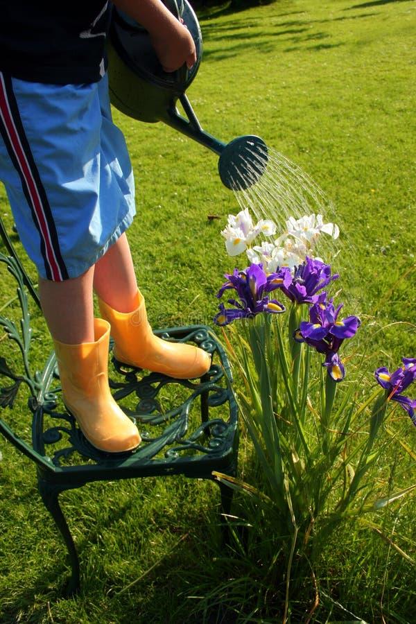 Jardinero joven fotografía de archivo libre de regalías