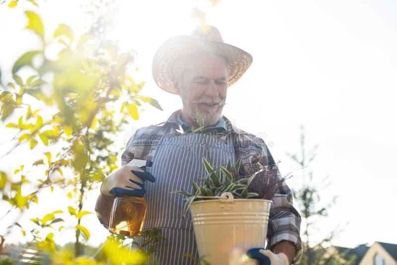 Jardinero jubilado agradable que pasa tiempo en el jardín fotos de archivo libres de regalías