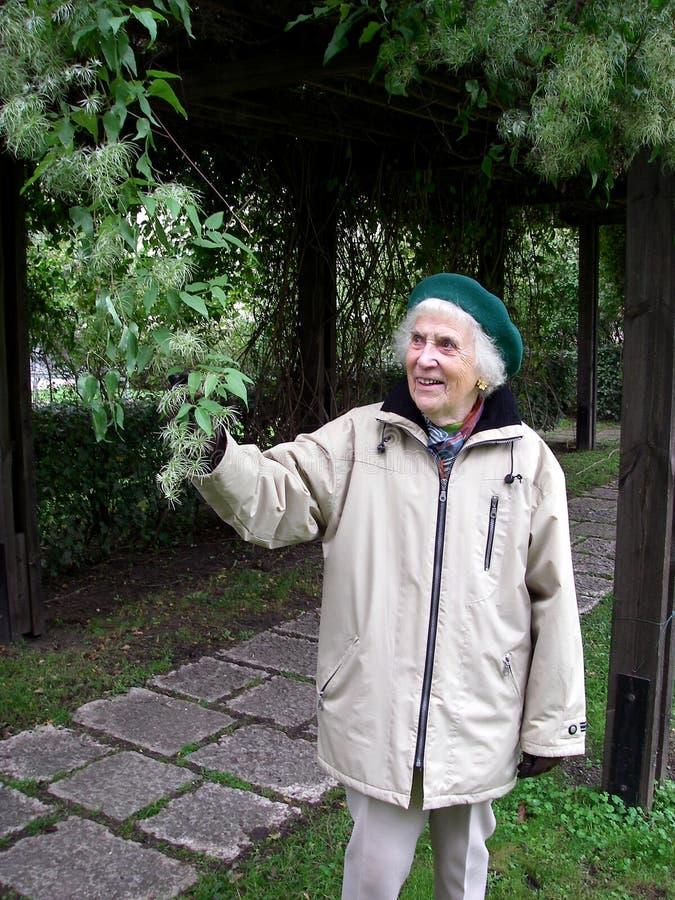 Jardinero mayor imágenes de archivo libres de regalías