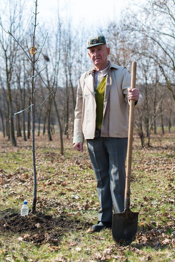 Jardinero mayor fotos de archivo