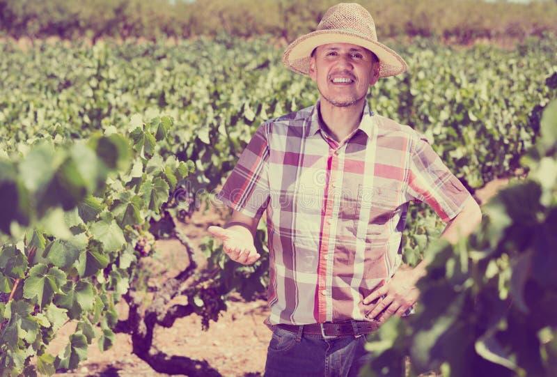Jardinero positivo del hombre que se coloca en árbol de las uvas imagen de archivo libre de regalías