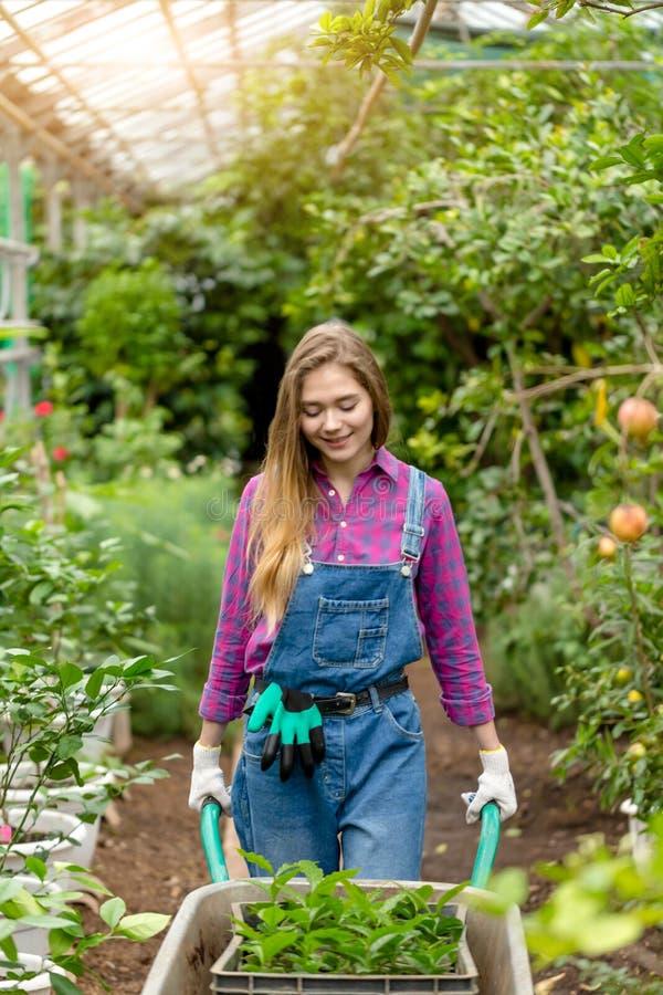 Jardinero rubio bonito que camina con el carro de jardín en el trabajo fotografía de archivo libre de regalías