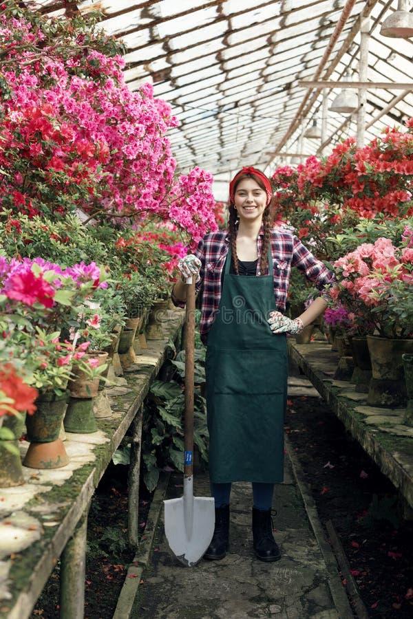 Jardinero sonriente de la muchacha en delantal y guantes con una pala y una mano grandes en la cintura en invernadero fotografía de archivo libre de regalías