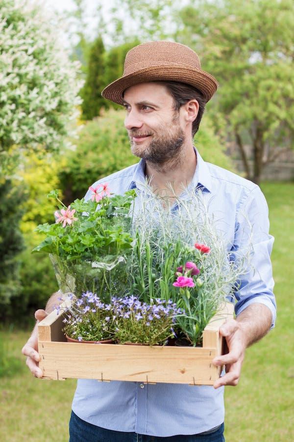 Jardinero sonriente feliz que sostiene la caja de madera llena de almácigos de la flor en potes imagen de archivo libre de regalías