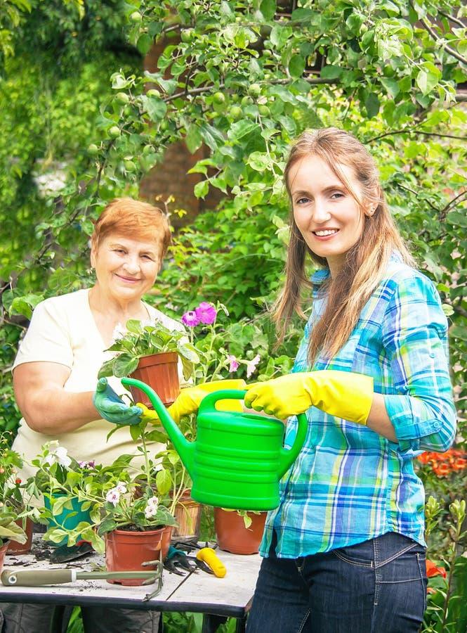 Jardineros madre e hija activas con los potes de flores y de wa imagen de archivo libre de regalías