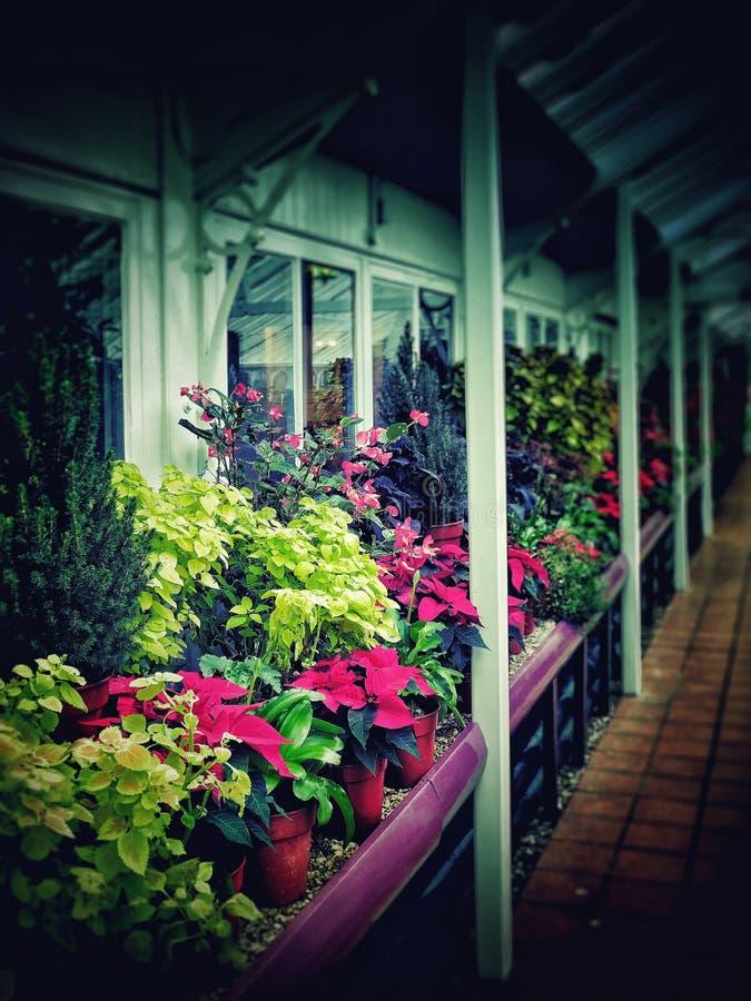 Download Jardines foto de archivo. Imagen de midlands, invernaderos - 64205232