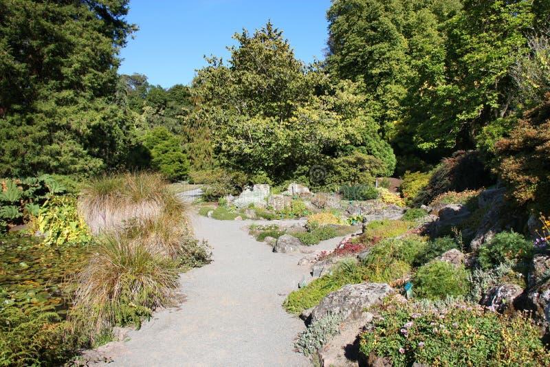 Jardines botánicos de Christchurch fotos de archivo libres de regalías