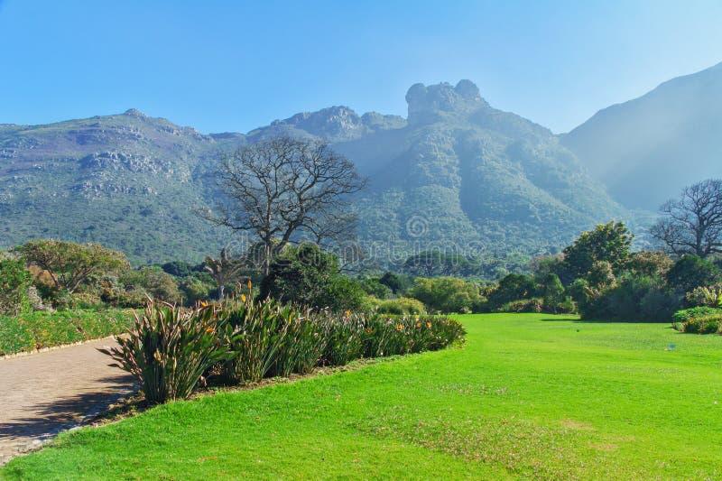 Jardines botánicos de Kirstenbosch fotos de archivo libres de regalías