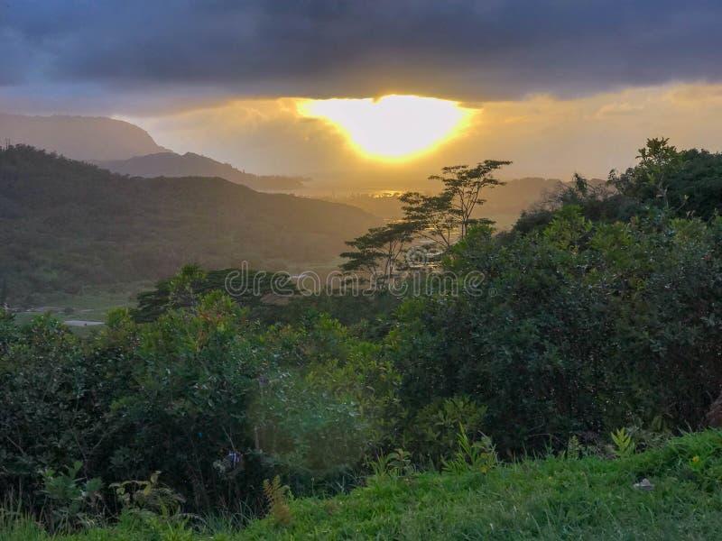 Jardines botánicos de Princeville, Kauai, Hawaii, los E.E.U.U. fotografía de archivo libre de regalías