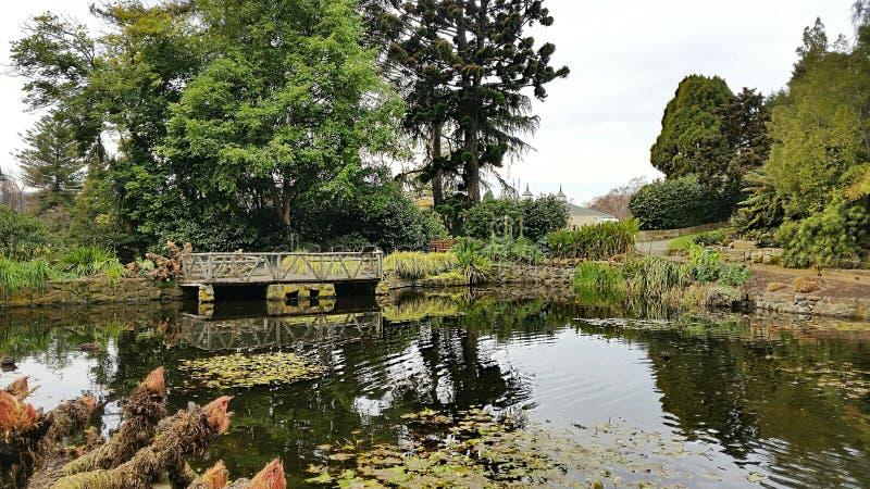 Jardines botánicos tasmanos imagenes de archivo