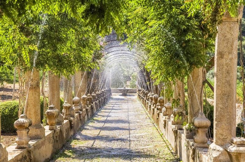 Jardines de Alfabia,马略卡 免版税图库摄影