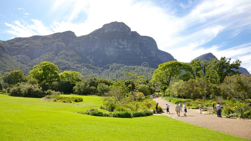 Jardines de Kirstenbosch fotos de archivo