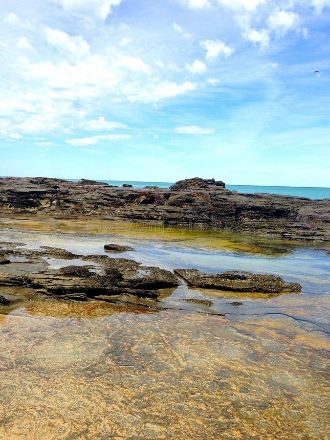 Jardines de rocalla de la playa imagenes de archivo
