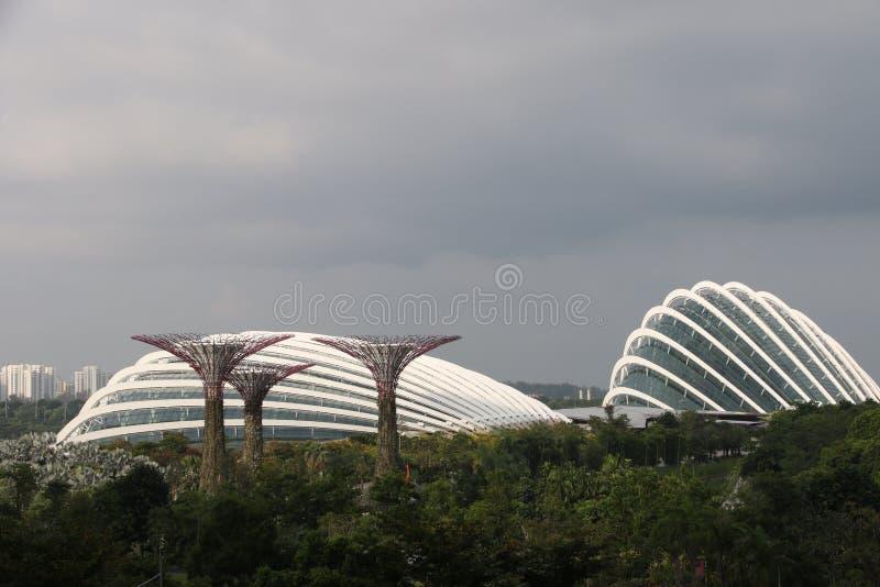 Jardines de Singapur por la bahía imagen de archivo