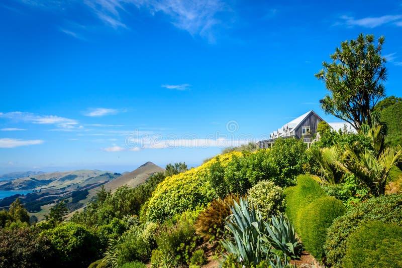 Jardines del castillo de Larnach, Dunedin, Nueva Zelanda imagen de archivo