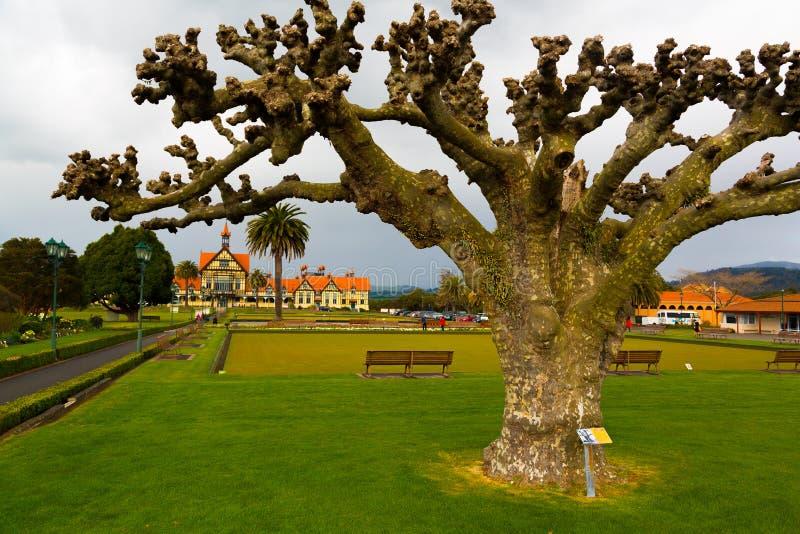 Jardines del gobierno - Rotorua fotos de archivo libres de regalías